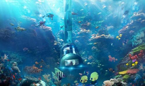 壁纸 海底 海底世界 海洋馆 水族馆 500_297